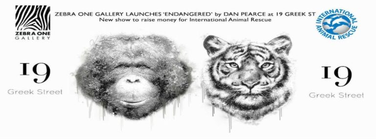 Endangered exhibition with Dan Pearce