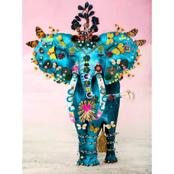 adored-adorned-b-brown-scheinmann-teal-elephant-small at zebra one gallery