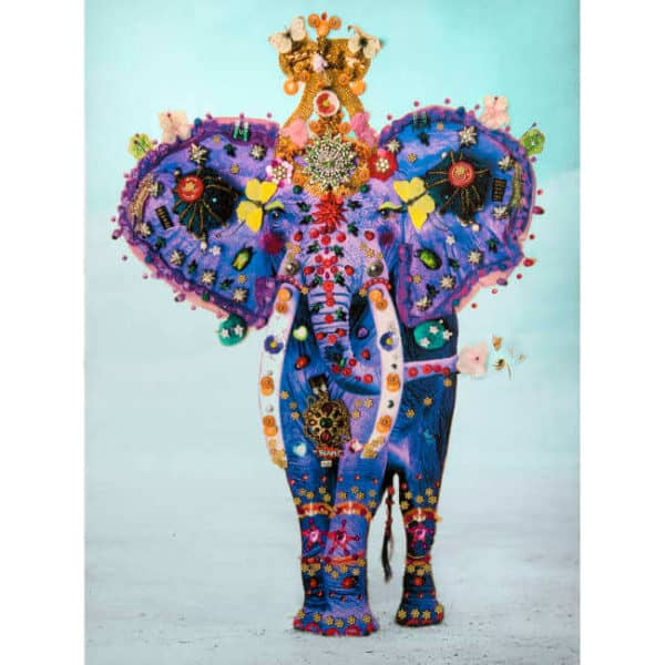 adored-adorned-b-brown-scheinmann-violet-elephant- small available at Zebra One Gallery