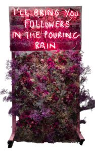 Eve de Haan I'll Bring You Followers in The Pouring Rain at zebra one gallery